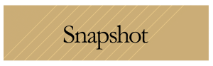 button1-snapshot